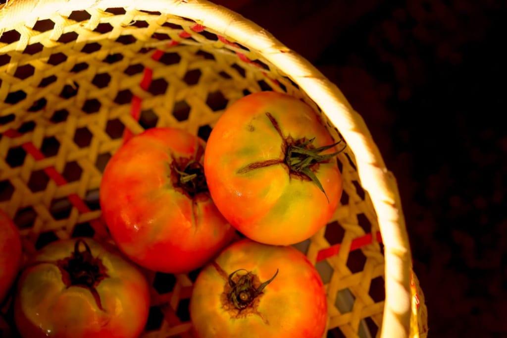 ヘタが青いトマト