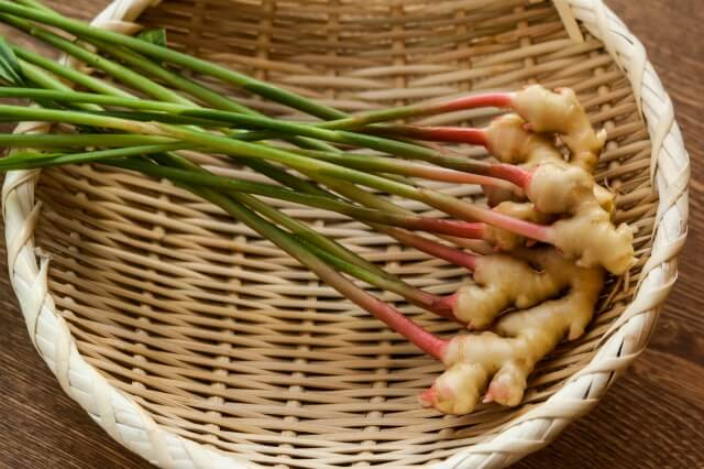 葉付きの生姜