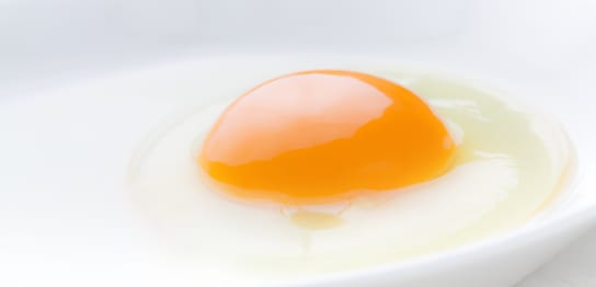 美味しそうな温泉卵