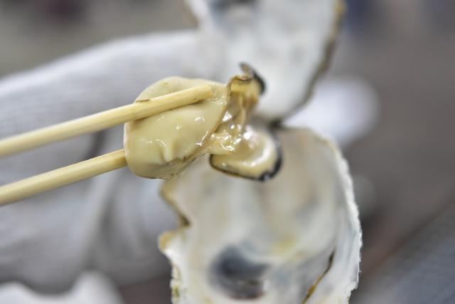 殻から取り出した生牡蠣